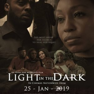 Light in the Dark movie